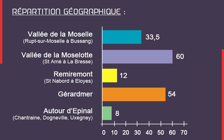 Répartition-géographique-des-emplois-Vosges-terre-textile-production-vosgienne-garantie