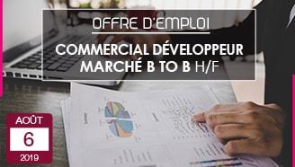 Offre emploi CDI Responsable développement commercial marché B to B Polytex
