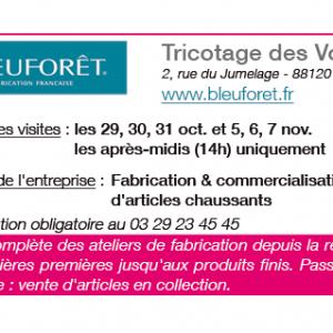 semaine-textile-vosges-terre-textile-Bleuforet